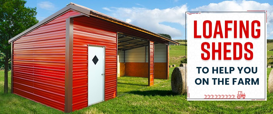 Loafing Sheds to Help You on the Farm